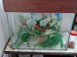 Fish tank in good conditions