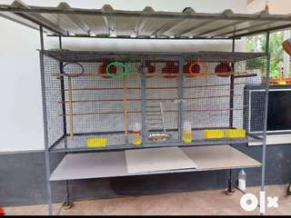 Bird Cage suitable for all types of pets