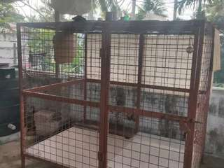 Dog Cage For Sale In TRIVANDRUM