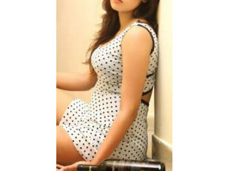 Call Girls In Call Girls in Rani Bagh 8595249195