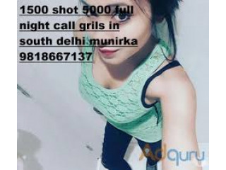 1500 ST 6000 NT Call Now 9818667137 Call Girls In Munirka ..