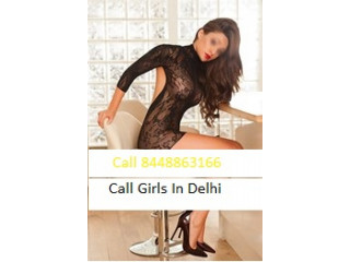 Call Girls In Vasant Kunj 8448863166 Escorts ServiCe In Delhi Ncr