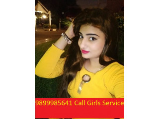 Call Girls In Delhi Green Park 9899985641 Delhi High Class Escort Service